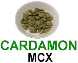 MCX Cardamom