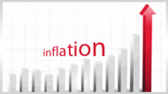 Inflation Indexed Bonds: The nuts and bolts