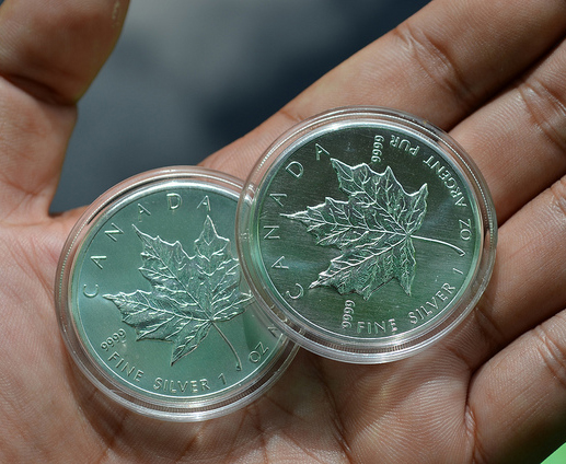 Canadian Silver Maple Sales Stronger Than Last Year