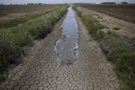 California Water Wars Escalate: State Orders Farmers To Stop Pumping