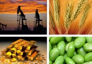 After a Collapse in Commodity Prices, What Next?