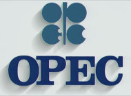 OPEC's Gloomy Long-Term Outlook For The Oil Market