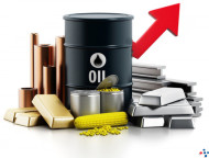 Fundamental & Technical Views in The Commodity Markets