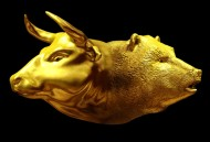 Will Gold Investors get more Bullish in 2017 or will the Bears Take Control?